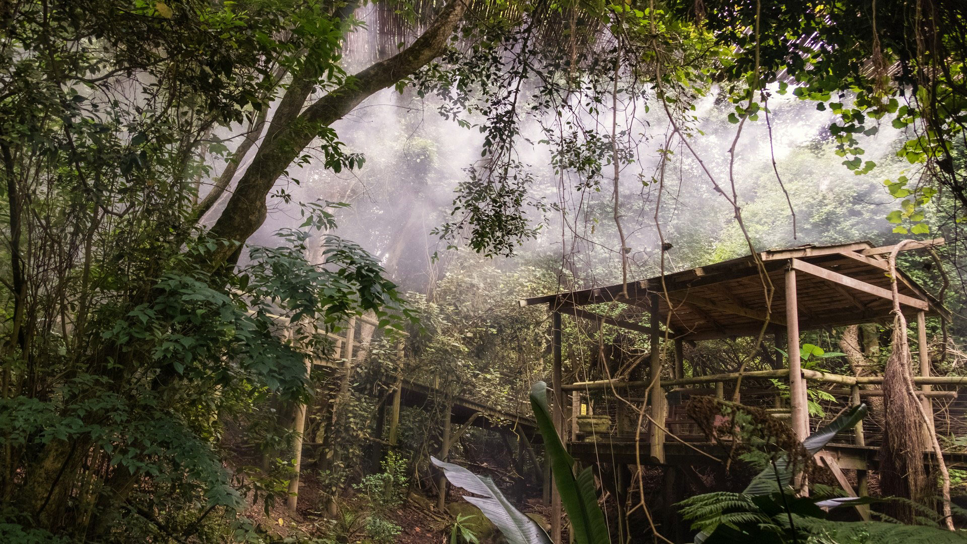Trogon House & Forest Spa Activities